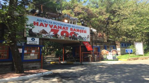 Зоопарк в Анталии как добраться